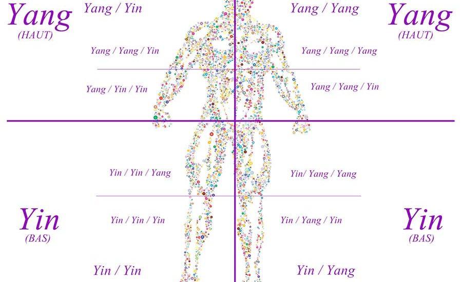 Symbolique douleurs côtés du corps yin yang